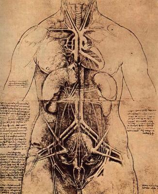 ars medicina - DesignBlog